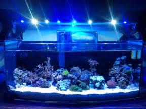 visio glass aquarium visio fish tank best free home design idea inspiration