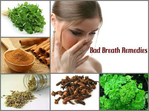 bad breath home remedy home remedies bad breath breaktheq