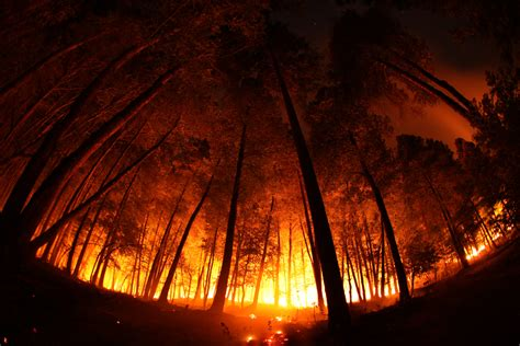 lighting in california lighting small fires as cure to catastrophic blazes in