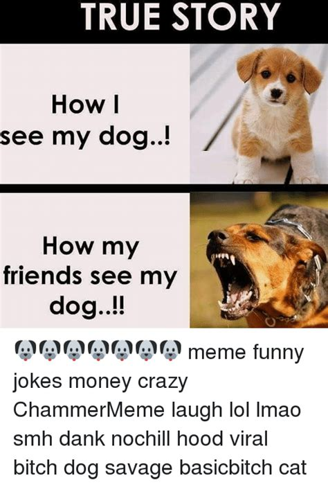 Dog Jokes Meme - true story how i see my dog how my friends see my dog