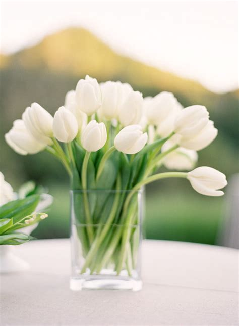 Vases For Tulips by White Tulips In Vase Pictures Photos And Images For