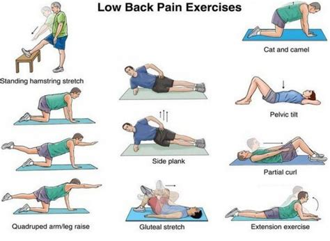 the definitive guide to lower back relief at home