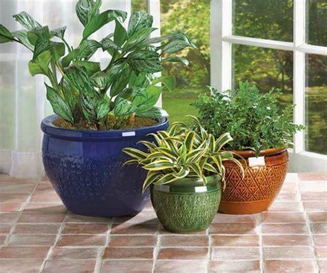 Large Flower Pots 3 Large Flower Pots Planters Ceramic Planters Pots