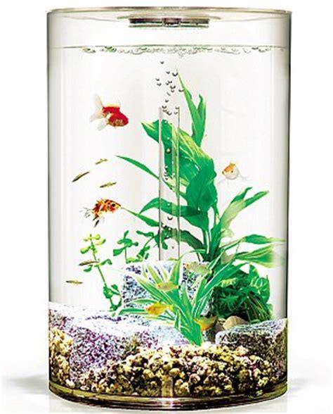 design your aquarium online the age of aquariums the 163 3 900 fish tank daily mail online