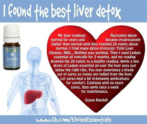 Lemon Essential Liver Detox by 25 Best Ideas About Living Detox On