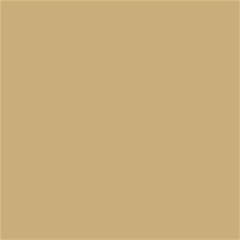 paint color sw 2813 downing straw from sherwin williams paint cleveland by sherwin williams