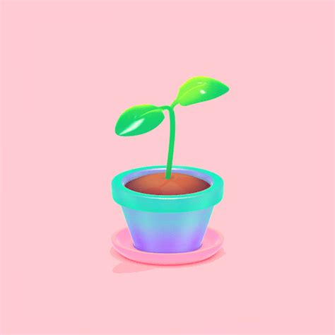 Potted Plants by Plants Gif
