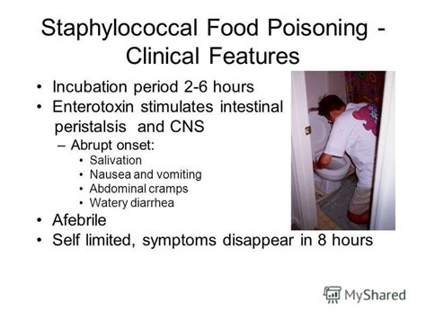 onset of food poisoning symptoms презентация на тему quot staphylococci facultative non sporulating non motile gram positive