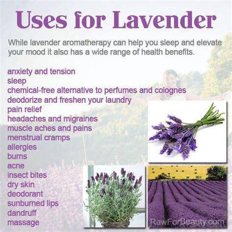 lavender diy health pinterest