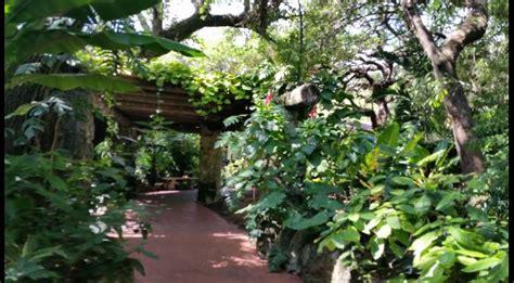 Pinecrest Botanical Gardens Garden Ftempo Pinecrest Botanical Gardens