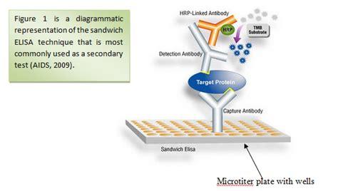 test elisa hiv antibody tests and elisa in hiv is it