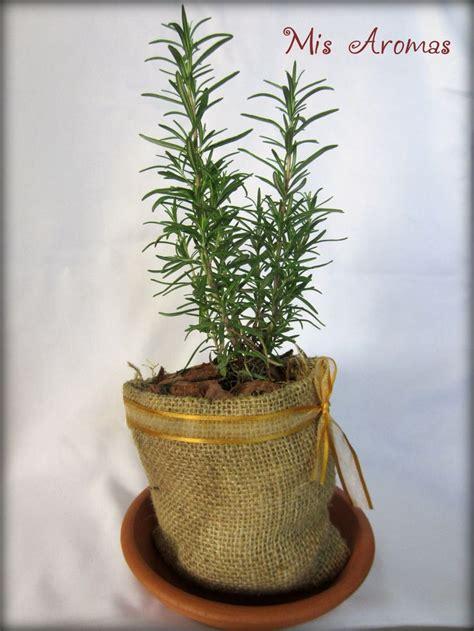 decorar macetas con arpillera centros de mesa para casamientos con plantas arom 225 ticas en