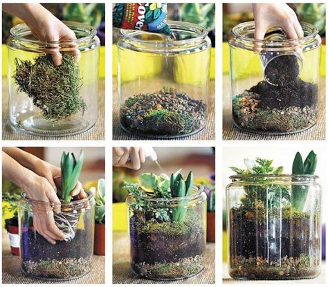 how to make a jar plant terrarium how to instructions