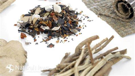 Black Mold Detox Herbs by Best 25 Mold Allergy Ideas On Mold Exposure