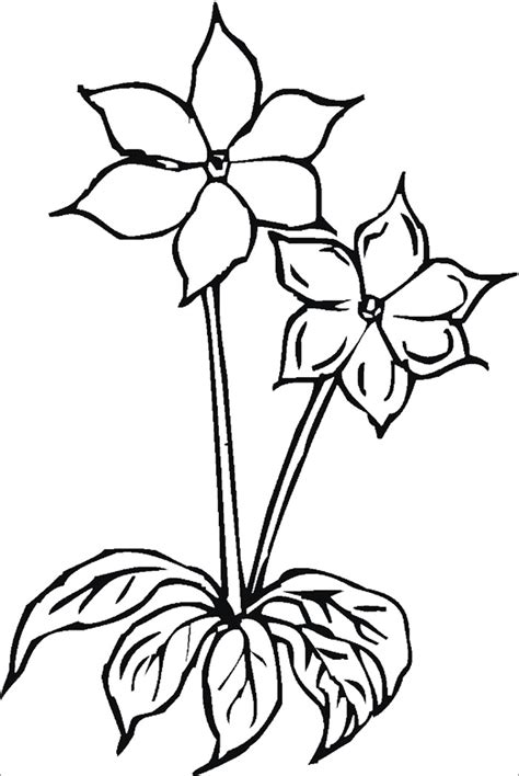 Template Of A Flower by Flower Template Free Templates Free Premium Templates