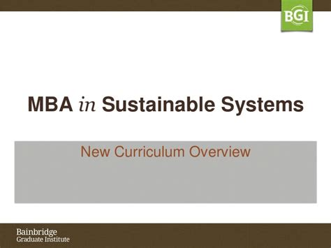 Mba Systems by Bgi S Mba In Sustainable Systems
