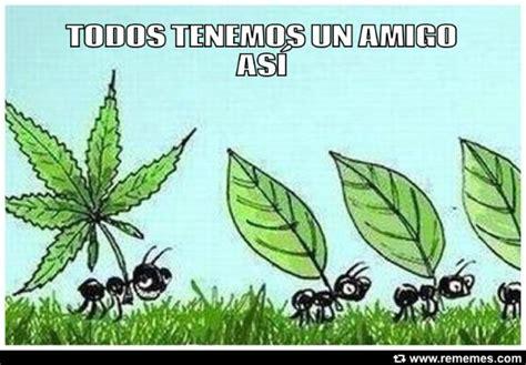 Memes De Marihuanos - el erazno memes d 237 a de la marihuana hoy 20 de abril