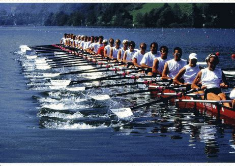 press release archives capital rowing club