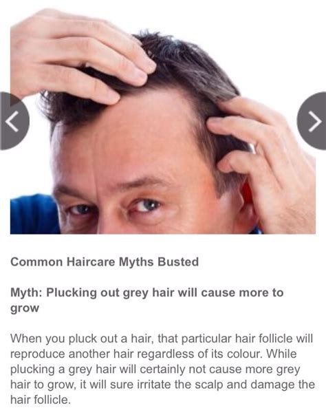 5 Hair Care Myths Did You That by Common Hair Care Myths Busted Musely