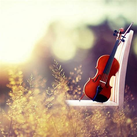 colorful violin wallpaper 40 stunning and beautifully designed apple ipad