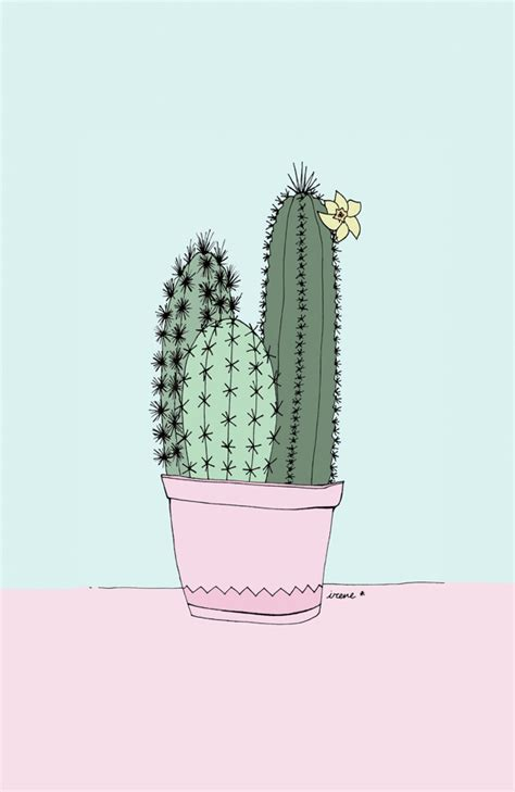 pastel cactus pattern cactus illustrations by irene cabrera lorenzo there s