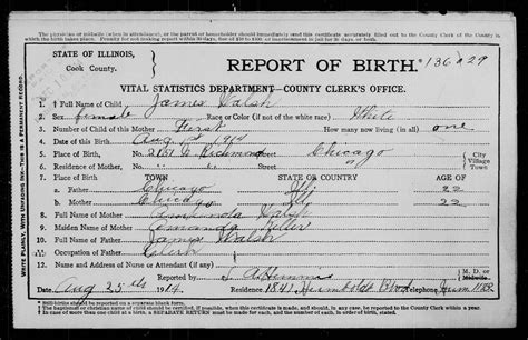 Cook County Records Mccarthy Genealogy Illinois Cook County Birth