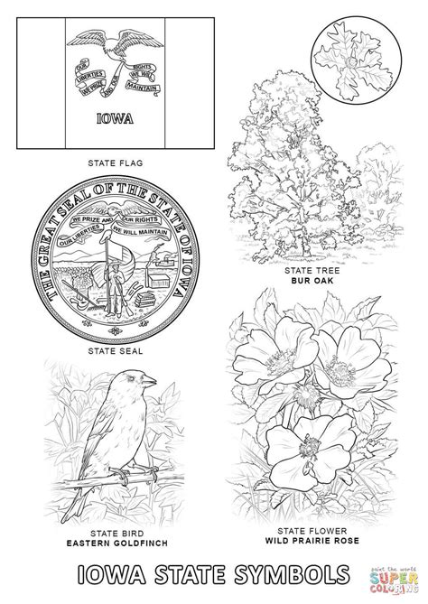 indiana state symbols coloring pages iowa state symbols coloring page free printable coloring