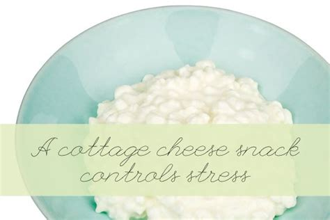 Amino Acids In Cottage Cheese by 1000 Images About Serotonin And Mental Health On
