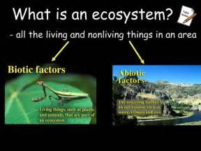 Abiotic factors of an ecosystem affect the biotic factors that can