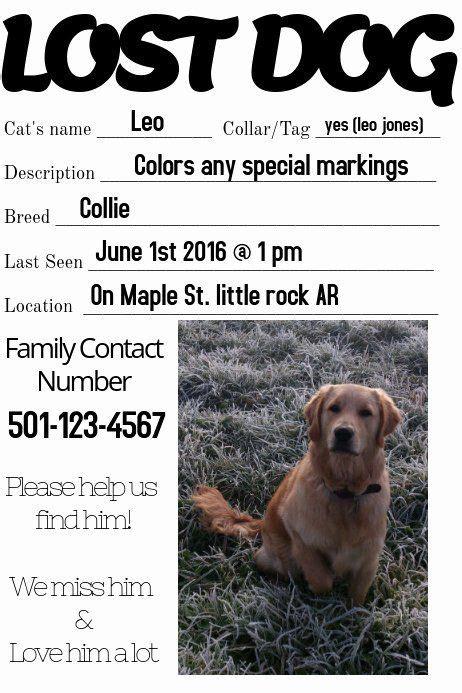missing pet flyer template   lost dog missing loved