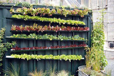 Gutter Vertical Garden Gutter Gardening