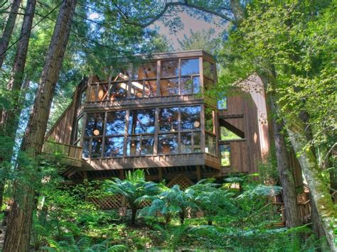 mill valley houses for sale world of architecture tree house in the forest mill valley california