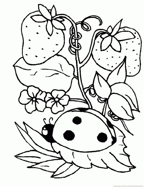 coloring pages ladybug girl ladybug coloring pages