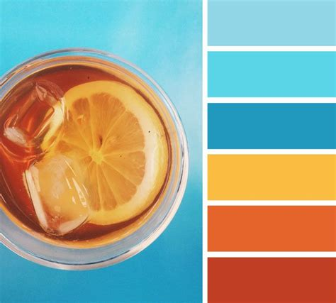 orange and blue color scheme best 25 coastal color palettes ideas on