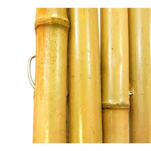 home depot bamboo fencing bamboo privacy fence fencing related keywords bamboo