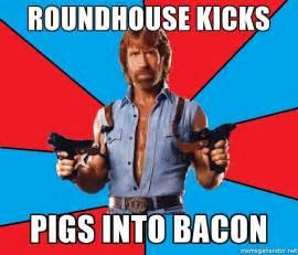 Bacon Meme Generator - roundhouse kicks pigs into bacon chuck norris meme