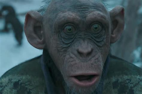 planet of the apes images bru s reviews war for the planet of the apes fights to