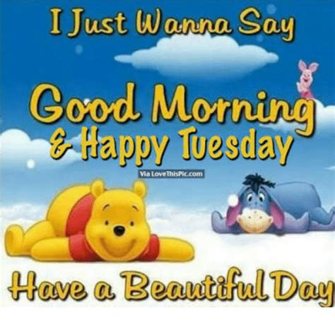 Happy Tuesday Meme - 25 best memes about happy tuesday happy tuesday memes