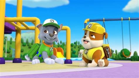 paw patrol breeds paw patrol images rocky the mixed breed hd wallpaper and background photos 40126962