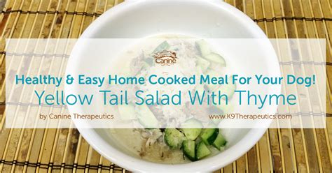 healthy easy home cooked meal for your dewey s