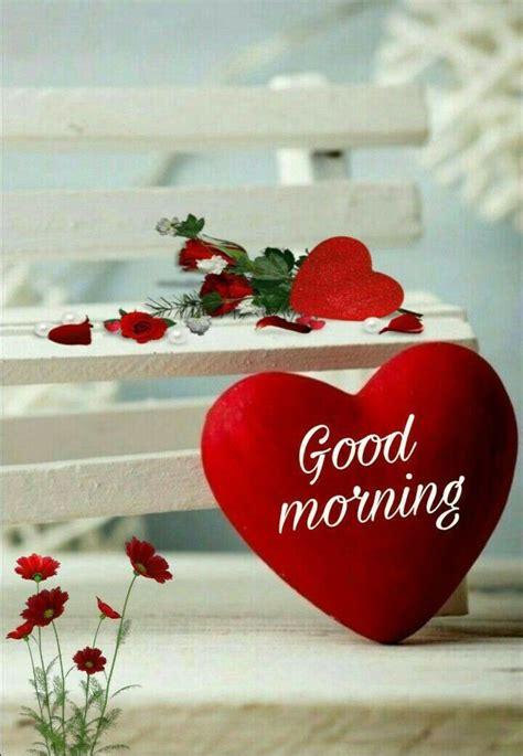 good morning sister  yourswish   good friday god