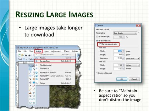 find hex color from image determining image colors find hex