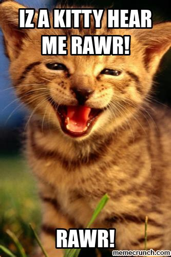 Rawr Meme - kitty rawr