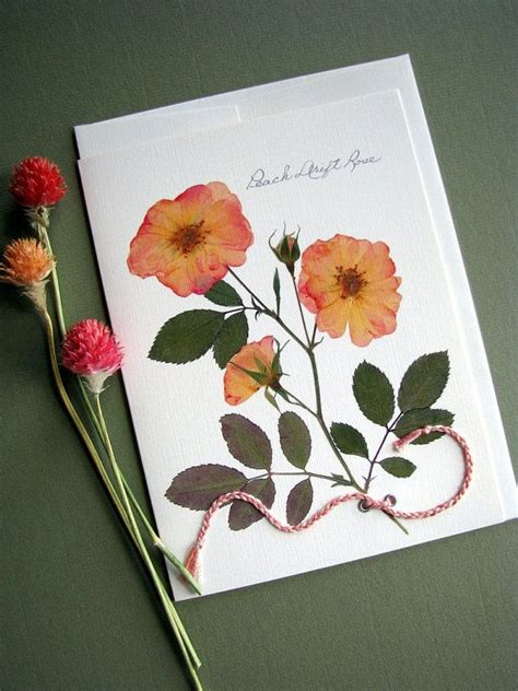 how to make pressed flower cards pressing flowers for card card world