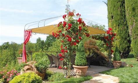 giardino feng shui giardini feng shui artista giardiniere