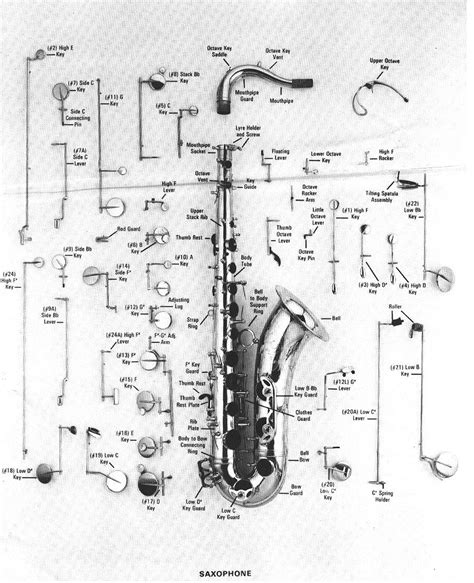 diagram of a saxophone parts of the saxophone