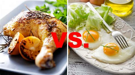 protein one egg chicken vs eggs which is the better protein