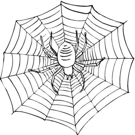 free printable spider web coloring pages for kids free incy wincy spider s coloring pages