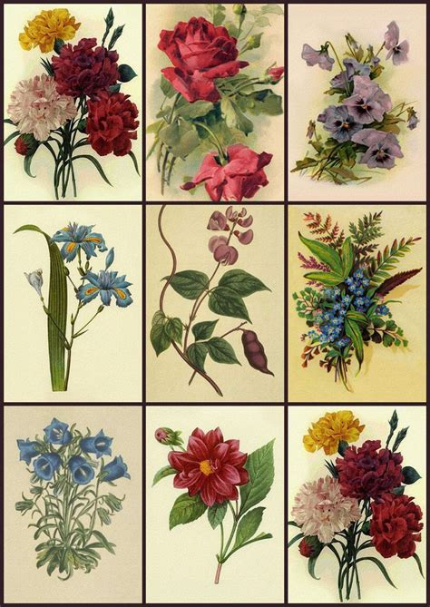 free printable decoupage flowers 15 best images about decoupage prints on pinterest