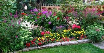 Garden Flowers Annuals Flowers Annuals Perennials Norwood Road Garden